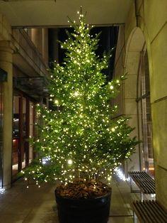 #Tokyo #Christmas