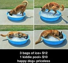 So cute! Chelsea would LOVE this! Sarah would just eat the ice though. lol!