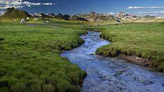 Uncompahgre Wilderness in Colorado.
