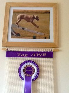 Rosettes and Awards New Photo Rosette Display Hanger for your dog show horse show rosettes more details visit www.displayyourrosettes.com