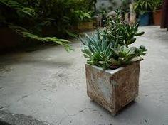 植木鉢 作家 - Google 検索