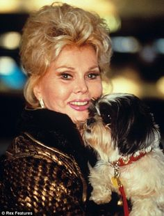 My darlink Zsa Zsa had nine husbands, and slept with Nixon. But her real love? Her shih tzus