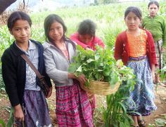 Girls learning to garden, Guatemala. Photo: Peace Corps, via Flickr