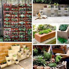 Ideas para jardin! Cactus, Interior Exterior, Ideas Para, The Neighbourhood, Organic, The Originals, Beautiful, Vertical Gardens, Bricks