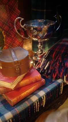 love tartan ....when I traveled to Scotland I bought the Stuart tartan for my Mother's family who came to America from Scotland in 1800's