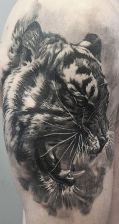 Black & Grey Tattoos By Schwarz,Photorealism.  For more of his work please visit the facebook page of  H.V.44 Tattoo Studio. Photorealism, Black And Grey Tattoos, Tattoo Studio, Facebook, Animals, Animales, Animaux, Black And Gray Tattoos, Animal