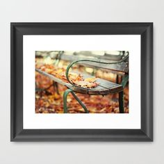"{Fallen Glory}  by Isabelle Lafrance Photography  Framed Art Print / Scoop Black MINI (12"" x 10"") $36.00"
