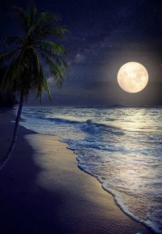 Beautiful fantasy tropical beach with Milky Way star in night skies full moon - Retro style artwork with vintage color tone (Elements of this moon image furnished by NASA) Beautiful Moon, Beautiful Beaches, Foto Picture, Moon Images, Full Moon Pictures, Shoot The Moon, Good Night Image, Amazing Nature, Belle Photo