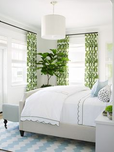 Fresh and airy bedroom with greenery-printed curtains, fiddle leaf fig tree, white bedding, chevron rug, and powder blue accents.