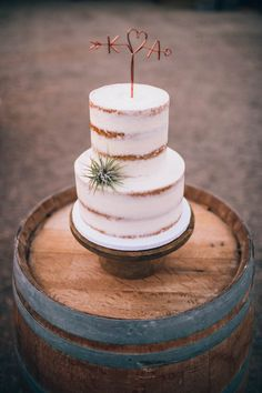 Nearly naked wedding cake with copper cake topper and air plant | Clarkie Photography