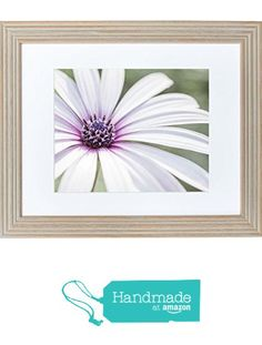 Framed Art Print, Fresh White Flower Floral Wall Art, 'Bed of Petals' from Offley Green https://www.amazon.com/dp/B01M75GBAP/ref=hnd_sw_r_pi_dp_n9J5ybDGPW474 #handmadeatamazon