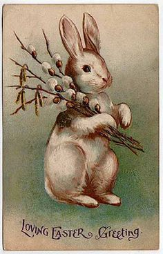 Shop Vintage Easter Bunny Rabbit Holiday Postcard created by kinhinputainwelte. Personalize it with photos & text or purchase as is! Vintage Greeting Cards, Vintage Postcards, Vintage Images, Happy Easter Wishes, Diy Ostern, Easter Parade, Bunny Art, Decoupage Vintage, Easter Celebration