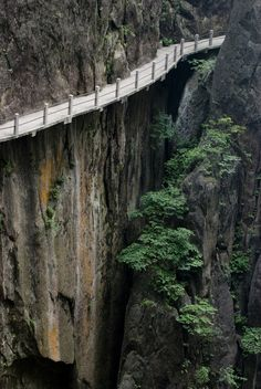 Yellow Mountain in China. Huangshan (Yellow Mountain).