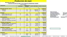 Corrida Financiera: Producción de Maíz, Ovinos y Jitomate en Inv. (Gratis) | Proyectos Agropecuarios