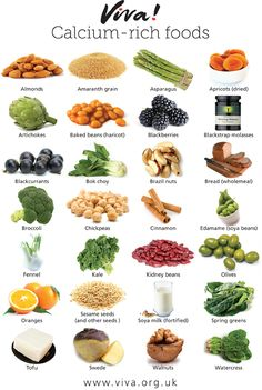 Viva! Calcium Nutritional Poster