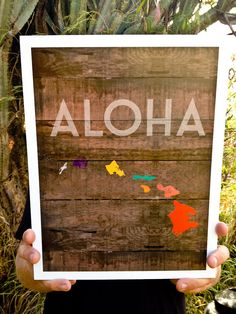 ALOHAWAII Poster. cute. They use the right island colors too.