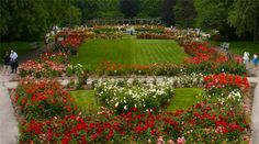 Park of Roses: Columbus, Ohio-- This is where I want to have the ceremony. I wouldn't have to worry about the flowers (because the roses are already there). There would be a white arch and folding chairs for guests.