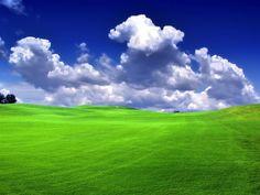 green fields - Google Search