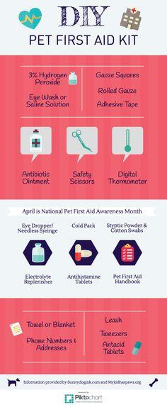 DIY Pet First-Aid Kit