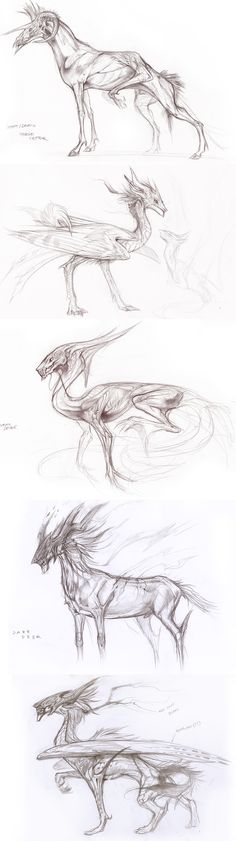Creature Sketches by Exileden.deviantart.com on @deviantART