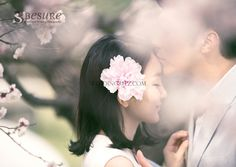 Korea Pre-Wedding Photoshoot - WeddingRitz.com » Besure Studio - Korea pre wedding photo shoot