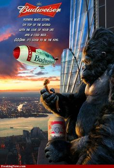 King Kong is one of the most favorite films of every generation. We have collected high-quality, printable King Kong poster for all the fans. King Kong 2005, Free Poster Printables, Beer Humor, Ufo Sighting, Horror Movies, Good Movies, Wonders Of The World, I Movie, Monsters