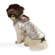 the cyndi chinchilla dog coat