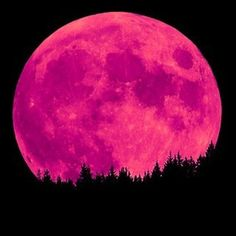 Full pink moon! Look for it in the sky on April 15, 2014.......it is beautiful!