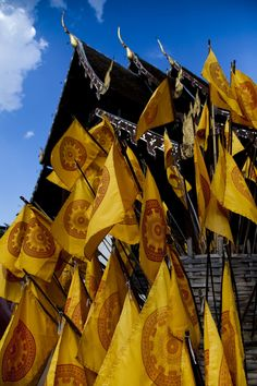 Temple Festival, Chiang Mai, Thailand