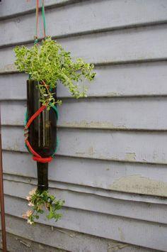 Les plantes ne sont pas faites uniquement pour le jardin et la terrasse; avoir des plantes dans son intérieur apporte un havre de paix et une toute de décoration spéciale. Par ailleurs, nous sommes…