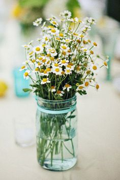 thinking of daisies! Would be a lovely surprise to receive these!