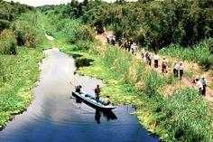 Entdecken die Naturschönheit von U Minh Wald - #AsiaticaReisen