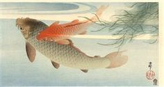 Golden Carp - Ohara Koson
