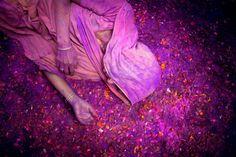 Γιορτάζοντας το Holi στο Vrindavan της Ινδίας.  ©Pascal Mannaerts