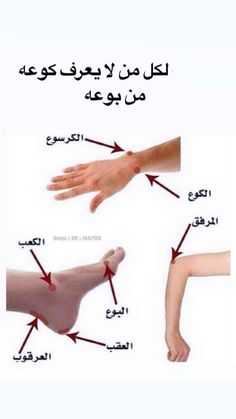 Underarm Workout, Best Online Shopping Websites, Daily Planner Pages, Vie Motivation, Arabic Lessons, Book Qoutes, Learning Websites, Good Movies To Watch, Islamic Phrases
