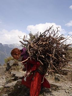 A woman carrying wood i Shimla, India, at the foothills of the Himalayas.