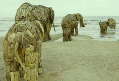 South African sculptor, Andries Botha constructed eight life sized elephants out of wood,and iron.The elephant were placed on the beach in De-Panne,Belgium. Elephant Love, Elephant Art, Wooden Elephant, Elephant Family, Elephant Sculpture, Sculpture Art, Land Art, Statues, Elephas Maximus