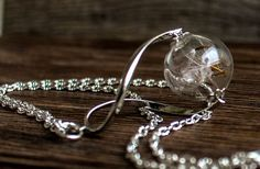 Real dandelion Necklace Jewelry Glass Globe Pendant Real