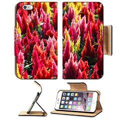 MSD Premium Apple iPhone 6 Plus iPhone 6S Plus Flip Pu Leather Wallet Case iPhone6 Plus IMAGE ID 39388838 colorful celosia flower as background -- Details can be found by clicking on the image.