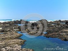 close-up-view-view-rocky-tidal-pools-seaview-port-elizabeth-south-east-coast-south-africa