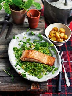 Pan-fried sea trout with watercress, pea shoots and mint sauce recipe Trout Recipes, Easy Fish Recipes, Sauce Recipes, Seafood Recipes, Healthy Recipes, Shellfish Recipes, Seafood Dishes, Delicious Recipes, April Recipe