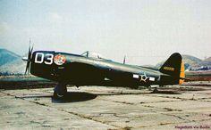 Republic P47D Thunderbolt USAAF 44-20339 Brazilian Air Force 350FG 1FS Pisa, Italy. Lost Apr 13 1945 pilot Santos KIA. Rio de Janeiro Aerospatial Museum.