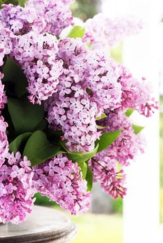 A Country Farmhouse: Hello Lilacs