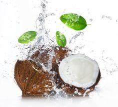 Beschreibung der verschiedenen Kokosnuss-Produkte