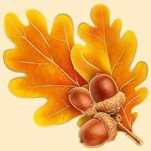 Империя Поздравлений - - Leaf Stencil, Autumn Illustration, Russian Folk Art, Leaf Drawing, Diy Crafts Hacks, Fall Projects, Colour Pallete, Autumn Theme, Flower Frame