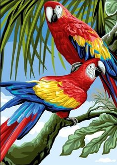 Parrot Painting, Painting & Drawing, Paintings Famous, Beautiful Paintings, Tropical Birds, Colorful Birds, Pretty Birds, Beautiful Birds, Toile Photo