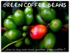 where can i buy green coffee capsules #weightloss