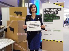 Anja Hazenkamp in Eu parlement for Party for the animals shows her support for EU #stopliveexports campaign