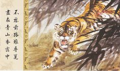 1pcs China Meticulous Tiger Painting Calligraphy Postcard Tiger Roar #07