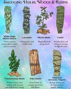 Using herbs are resins are one of my favorite tools for clearing negative energy. Here are some of the most common smudge sticks and resins and their Healing Herbs, Natural Healing, Medicinal Herbs, Holistic Healing, Chakra Heilung, Smudging Prayer, Sage Smudging, Les Chakras, Witchcraft For Beginners